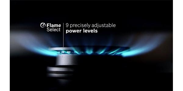 Flame2.jpg